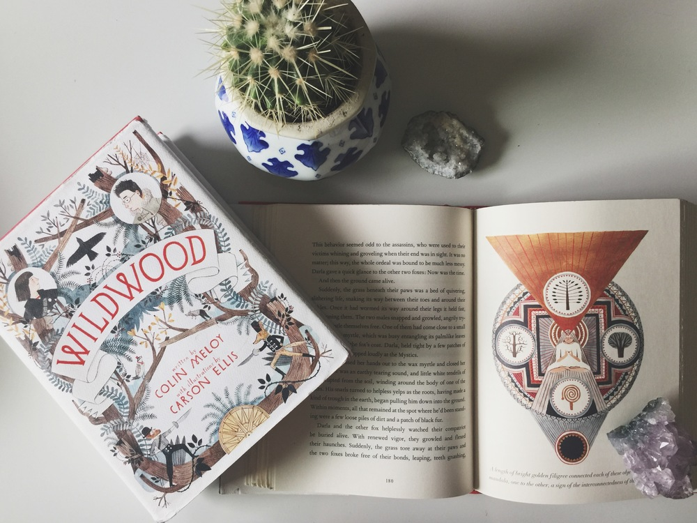 Image result for the wildwood chronicles books