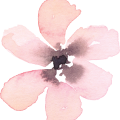 cropped-blush-flower-02.png
